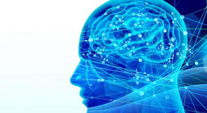 頭の中(脳)のイメージを機械学習で覗き見れる未来が来た!