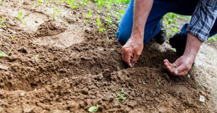 農業技術のイメージ