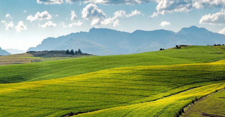 世界の農業のイメージ