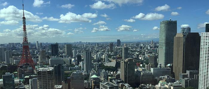 マイクロチップ埋め込みで日本でできることのイメージ