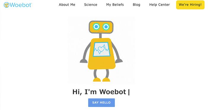 webotキャプチャーイメージ