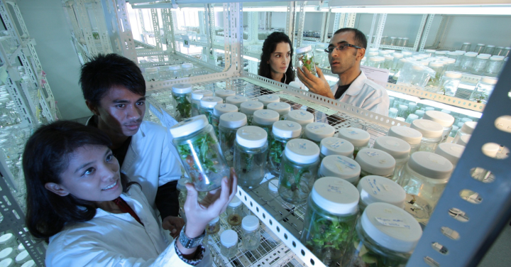 栽培の研究所のイメージ