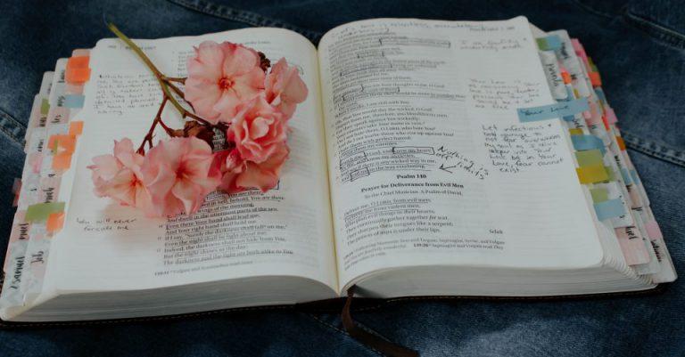 英語の勉強本のイメージ