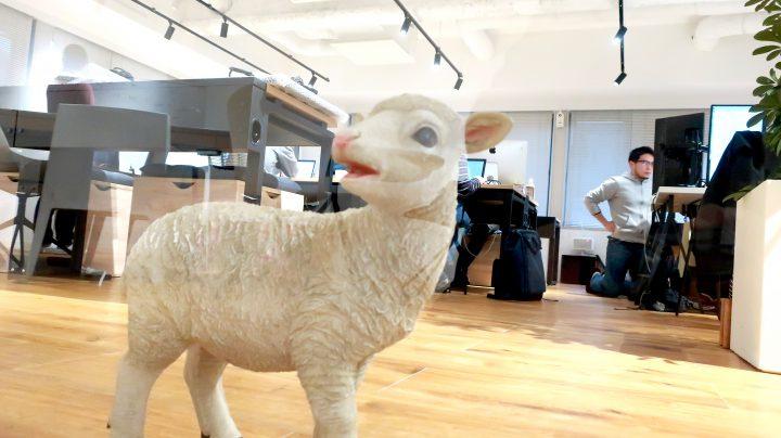 ミーティングルームの下のカラスの羊のオブジェ