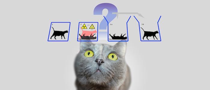 シュレーディンガーの猫のイメージ