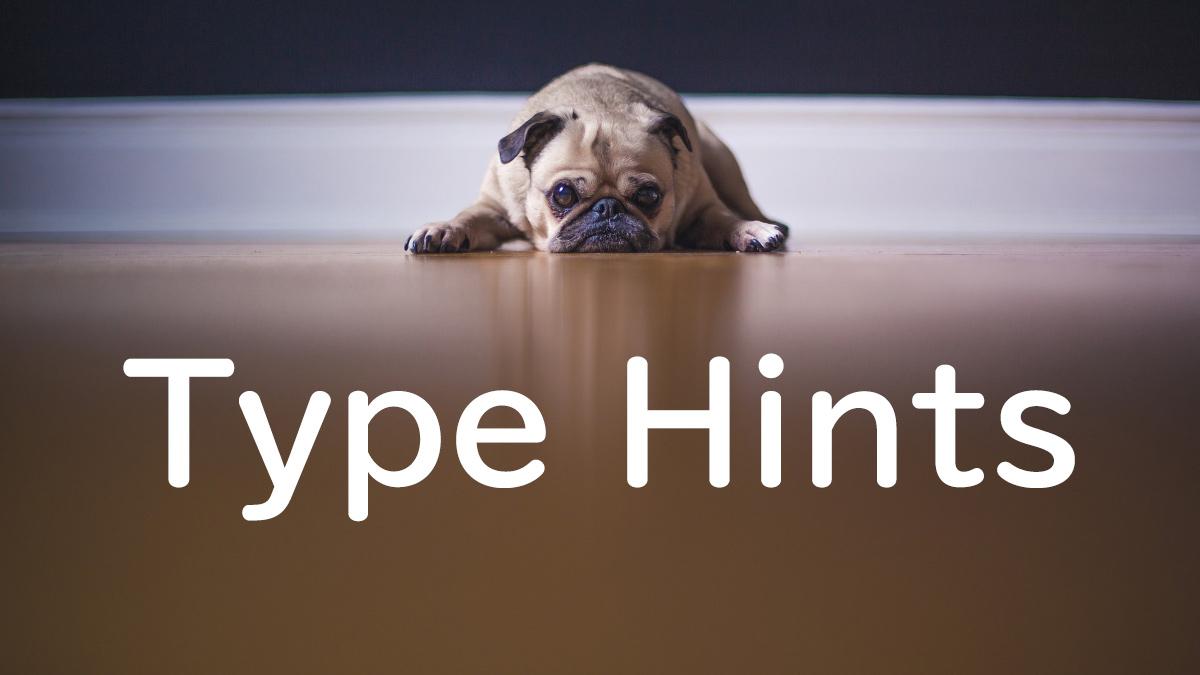 脱Python初心者!Type Hintsを使ったより良いコードを書くためのコツ