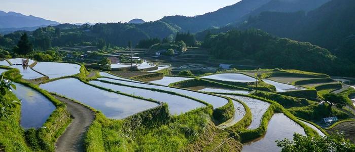日本の農業のイメージ