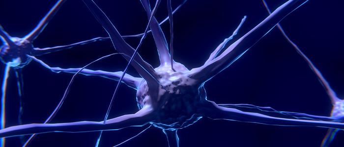 脳内地図のイメージ