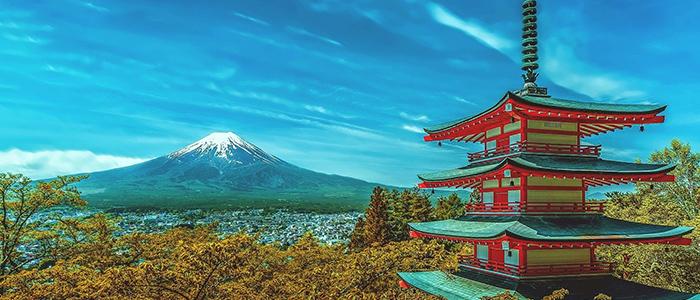 日本の強みを活かすイメージ