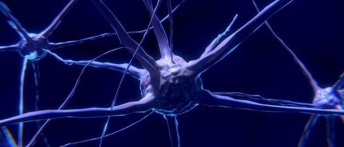 神経細胞のイメージ