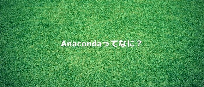 Anacondaってなに?