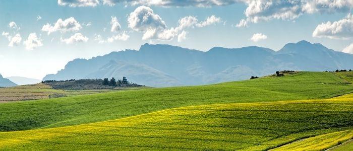 農業のイメージ