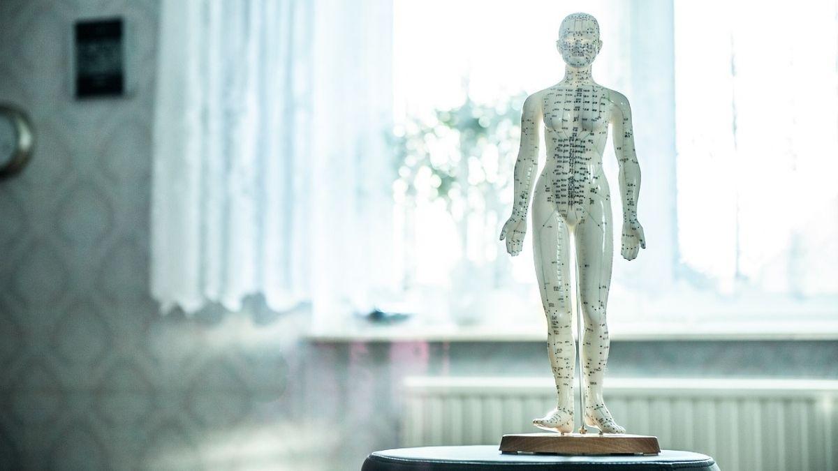 接骨院がAI(人工知能)を使って施術をおこなう未来を予想してみた