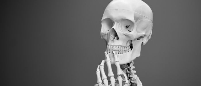 骨格のイメージ