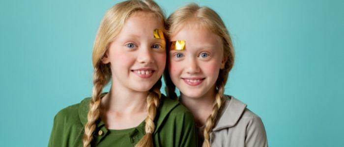 双子のイメージ