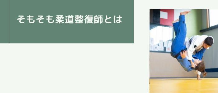 柔道整復師のイメージ